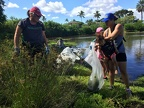 Volunteer clean Loko Pa'aiau on National Public Lands Day, Oct. 8, 2016